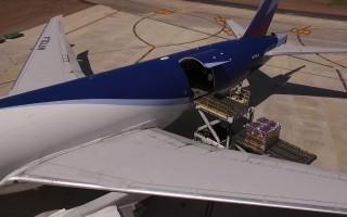 Avión cargado con arándanos tucumanos rumbo a EEUU